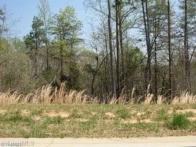 260 Heatherwood Drive #(lot 268), Winston Salem NC 27107 - Photo 1