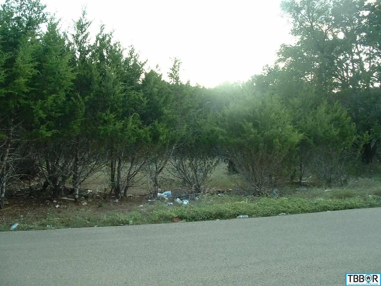 0000 Retama, Morgans Point TX 76513 - Photo 1