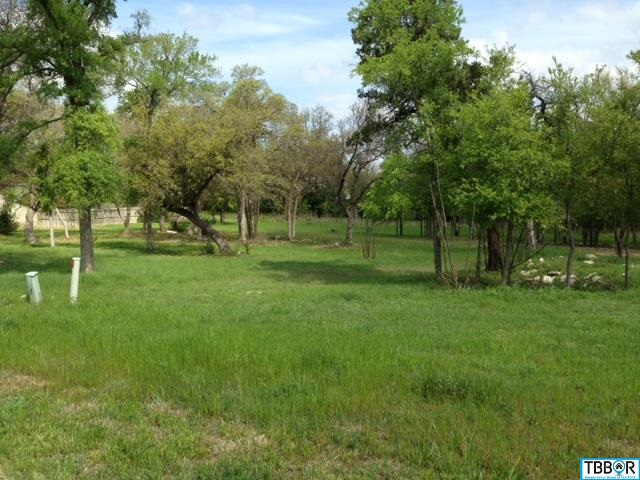 478 Eagle Landing, Temple TX 76513 - Photo 1