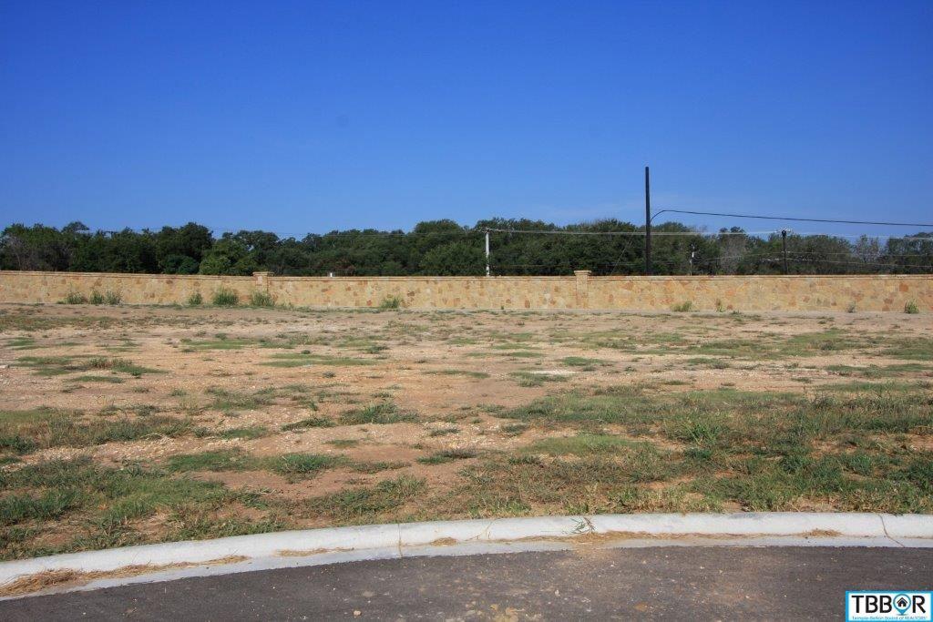 3080 Pecan Meadow Dr., Belton TX 76513 - Photo 1