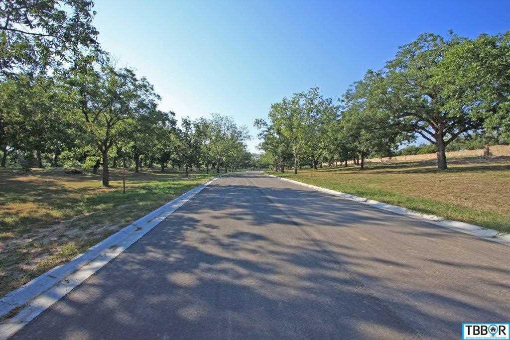 3080 Pecan Meadow Dr., Belton TX 76513 - Photo 2