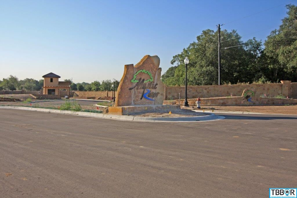 3030 Pecan Meadow Dr., Belton TX 76513 - Photo 2
