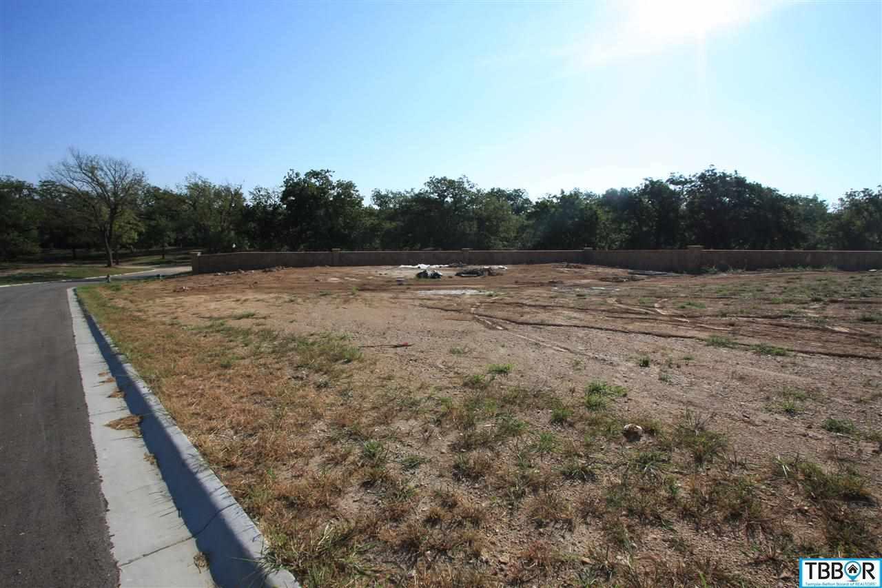 3045 Pecan Meadow Dr., Belton TX 76513 - Photo 1