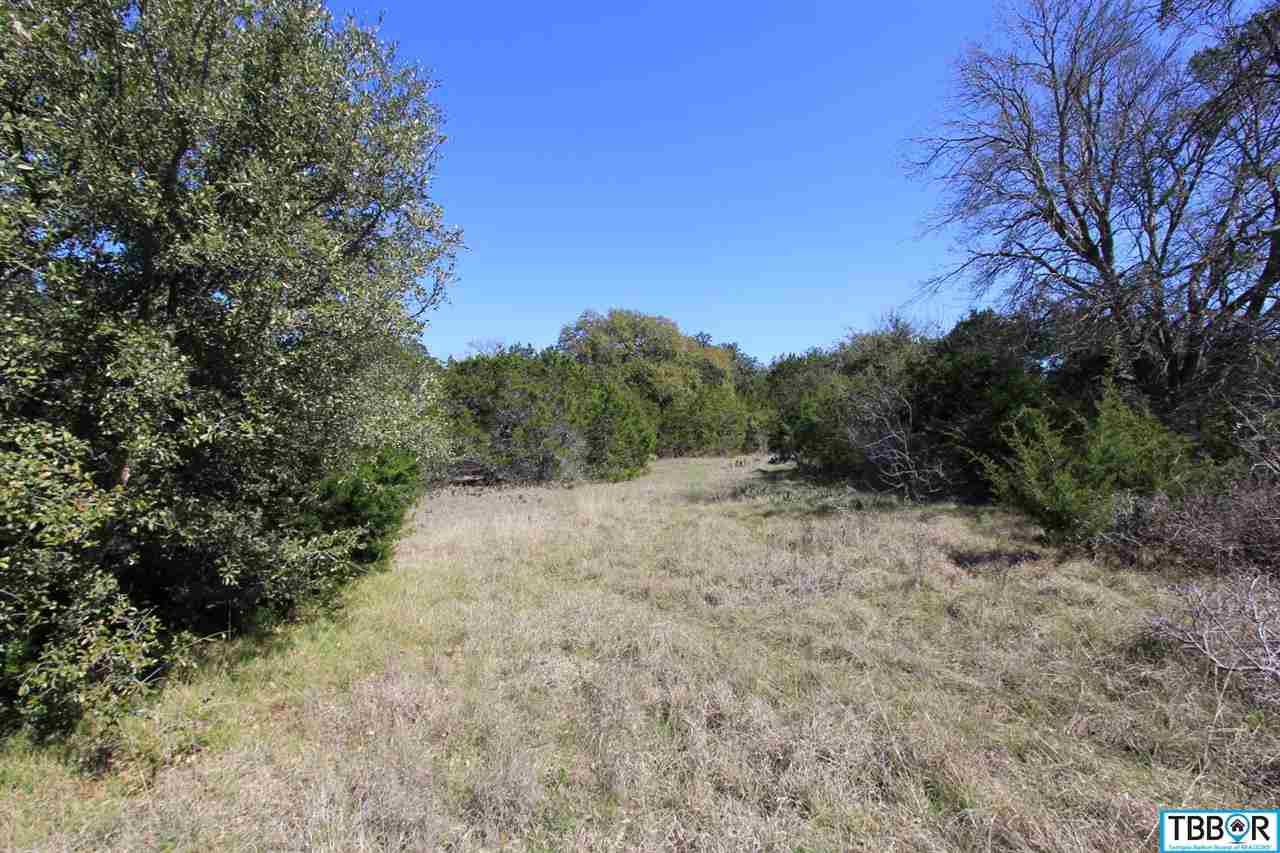 Lot 6 Mackie Drive, Salado TX 76571 - Photo 1