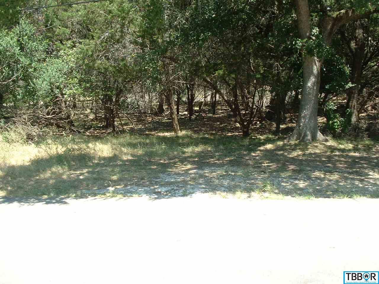 0000 Blackjack, Morgans Point TX 76513 - Photo 1