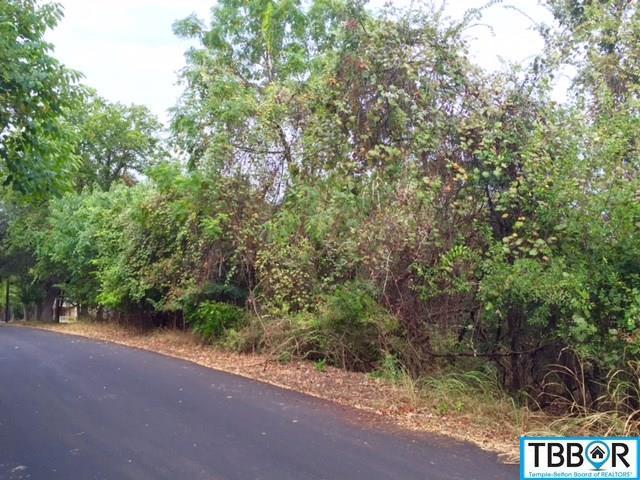 Tbd Aztec, Morgans Point TX 76513 - Photo 1