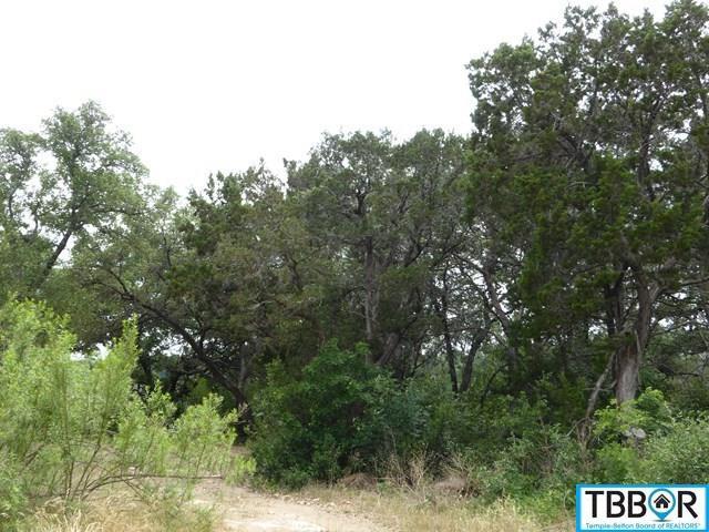 Marigold, Belton TX 76513 - Photo 2
