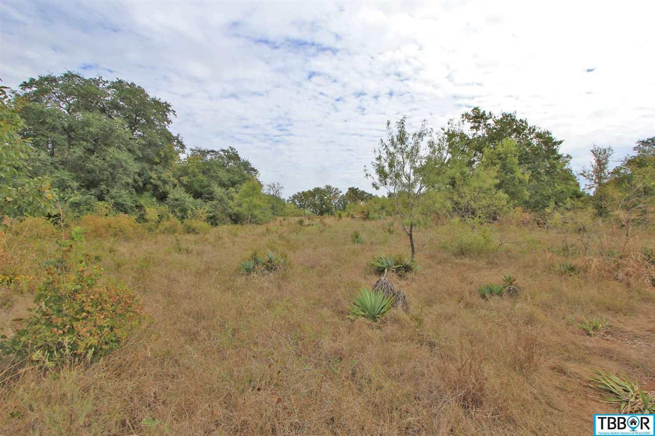 Lot 1 Mackie Drive, Salado TX 76571 - Photo 1