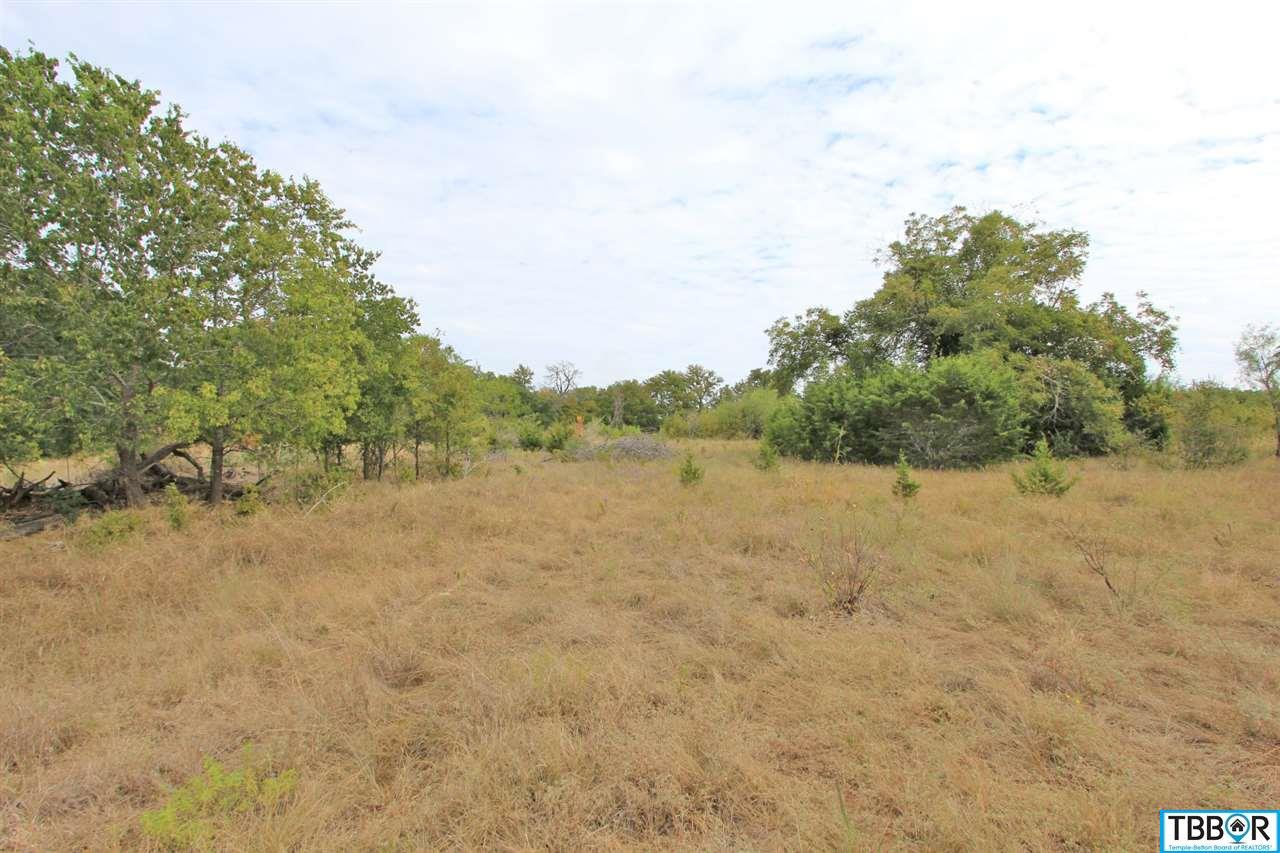 Lot 1 Mackie Drive, Salado TX 76571 - Photo 2