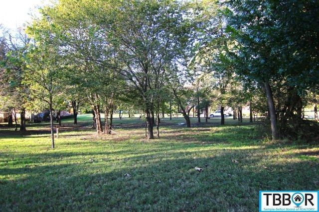 5111 Sunflower Lane, Temple TX 76502 - Photo 1