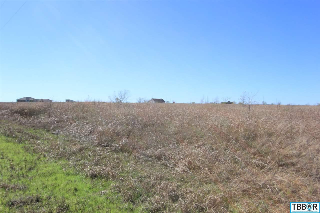 Tract 8 Wallace Road, Holland TX 76534 - Photo 2
