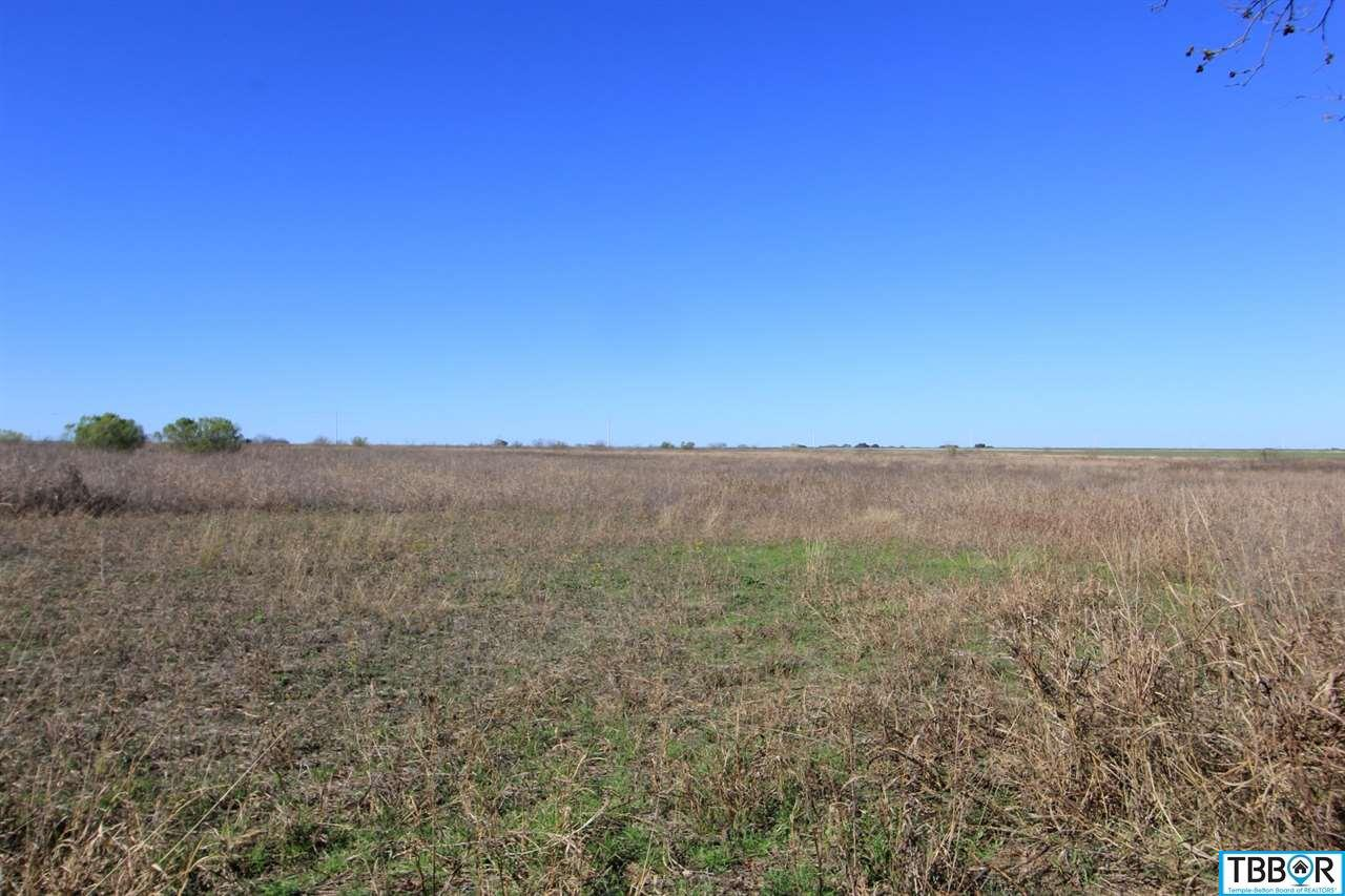 Tract 1 Wallace Road, Holland TX 76534 - Photo 2