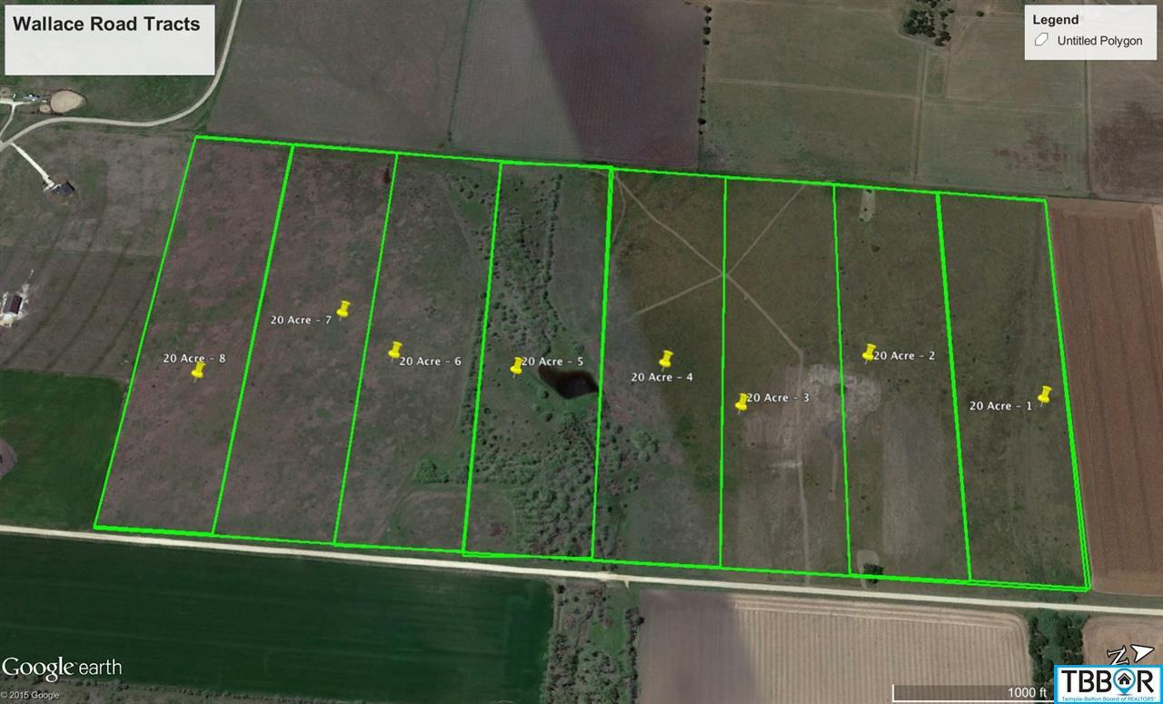 Tract 2 Wallace Road, Holland TX 76534 - Photo 1