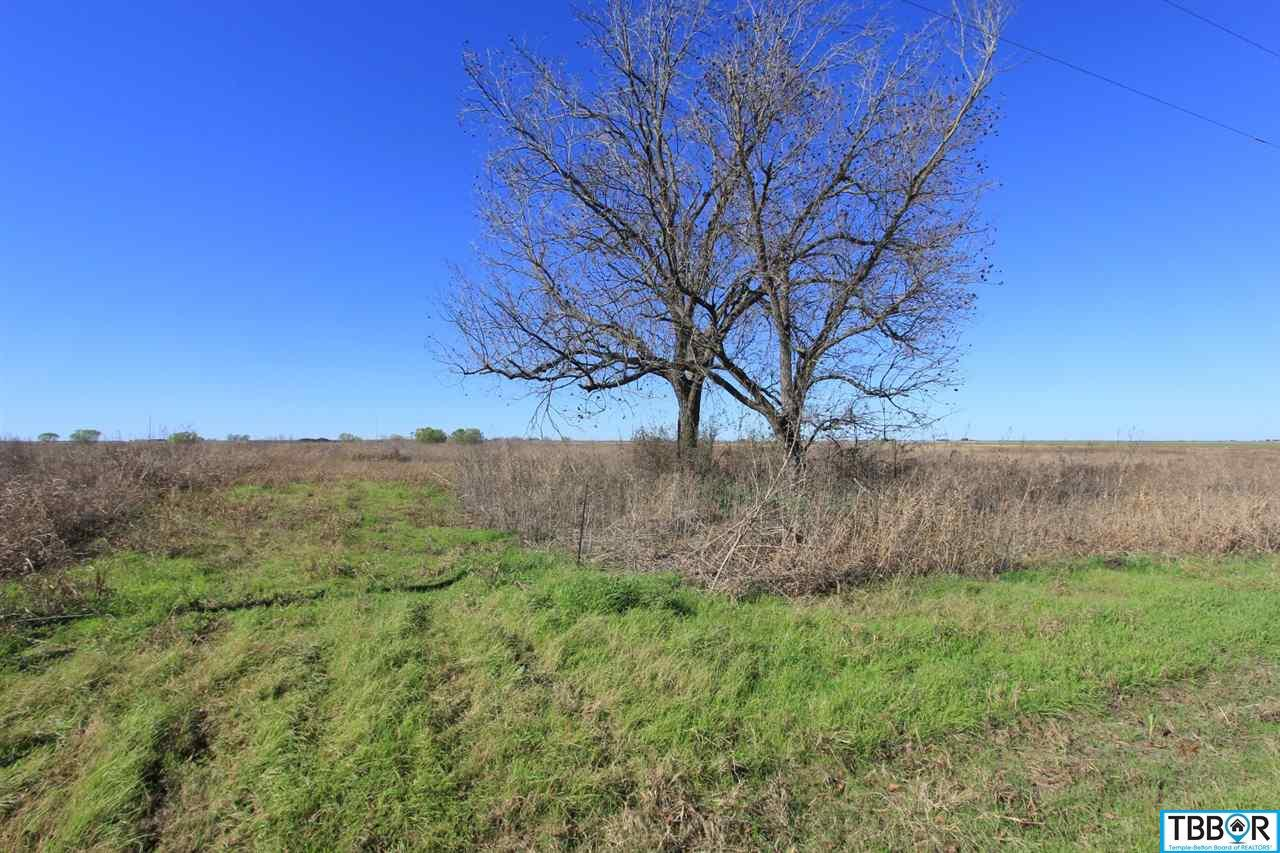 Tract 2 Wallace Road, Holland TX 76534 - Photo 2