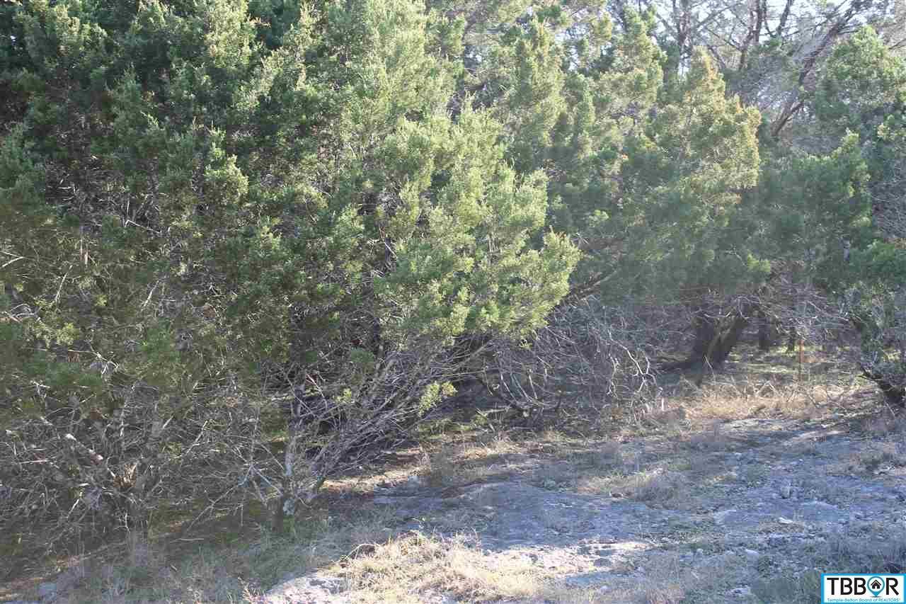 15897 Salado Dr, Temple TX 76502 - Photo 2