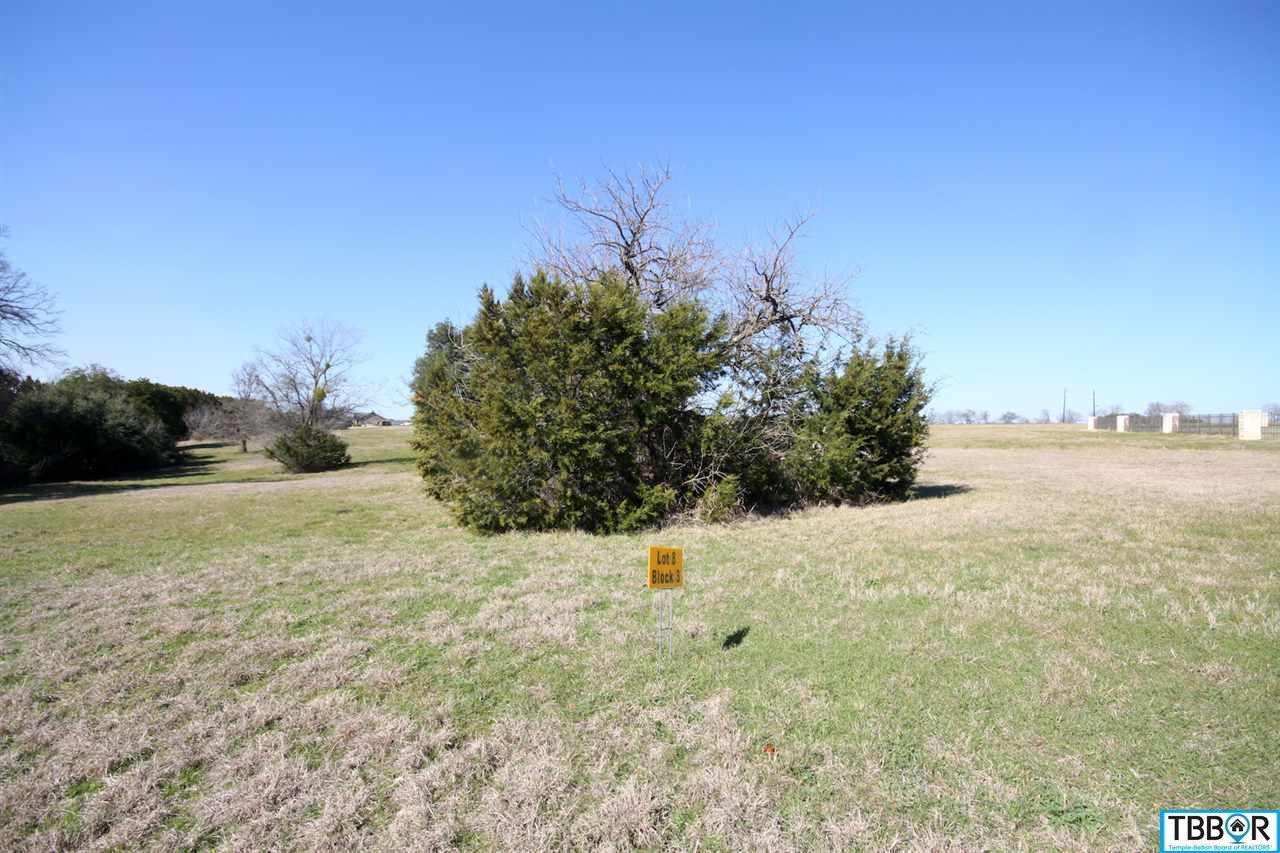 3165 Worth Lane, Belton TX 76513 - Photo 1