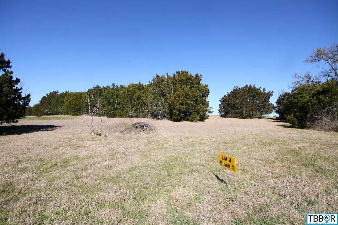 3119 Worth Lane, Belton TX 76513 - Photo 1