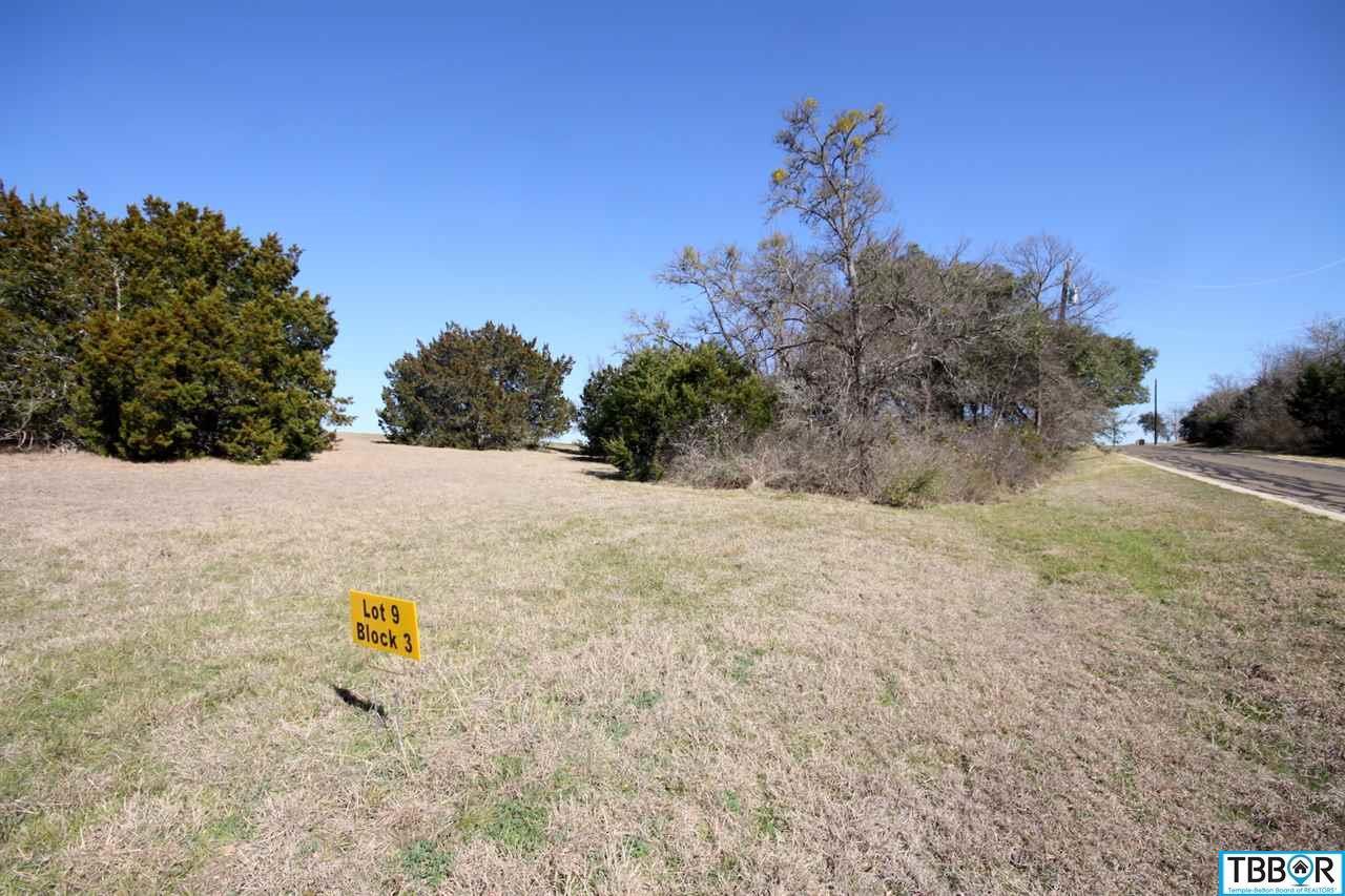 3119 Worth Lane, Belton TX 76513 - Photo 2