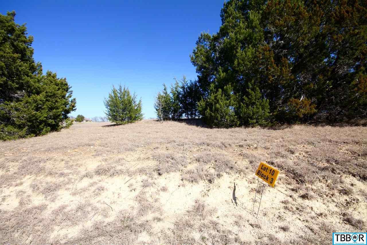 5039 Tribute Lane, Belton TX 76513 - Photo 1