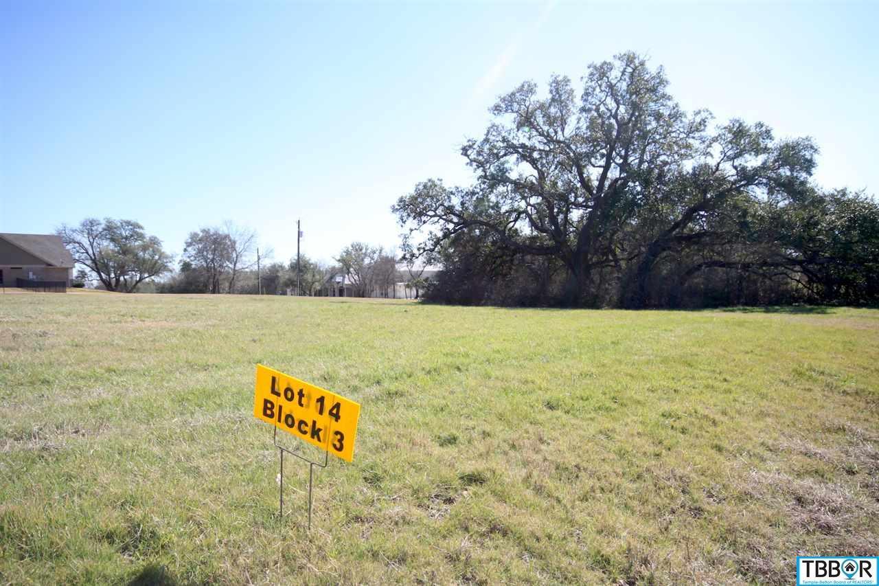 000 Tribute Lane, Belton- Salado Schools TX 76513 - Photo 1