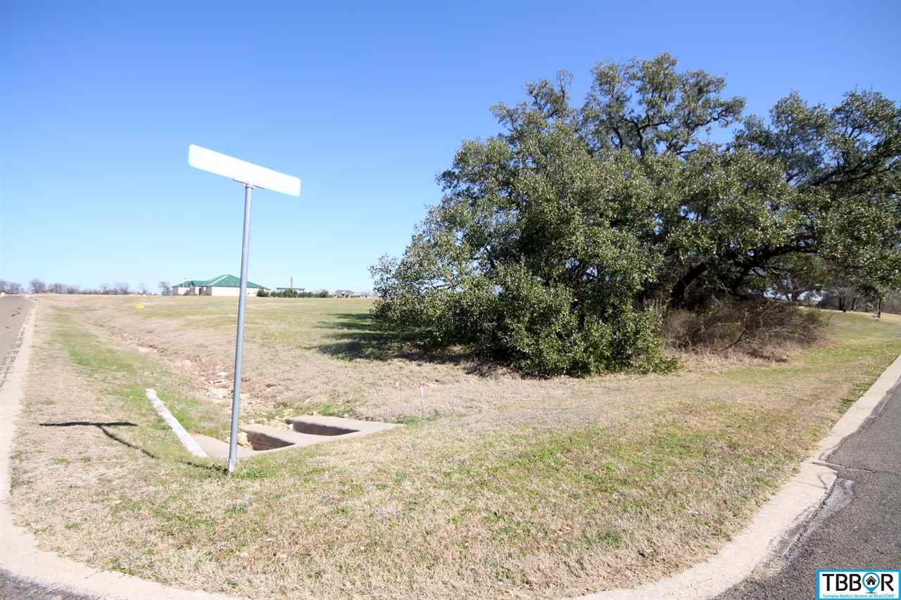 000 Tribute Lane, Belton- Salado Schools TX 76513 - Photo 2