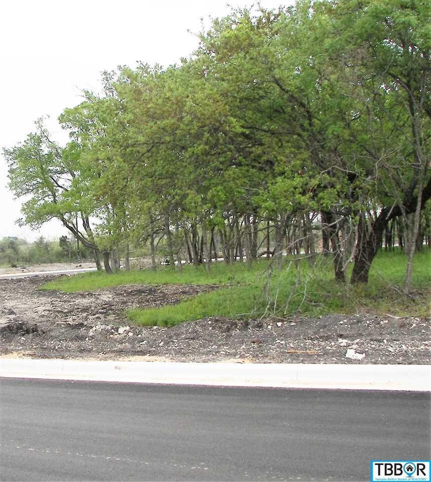 Tbd Haymarket Drive, Temple TX 76502 - Photo 1