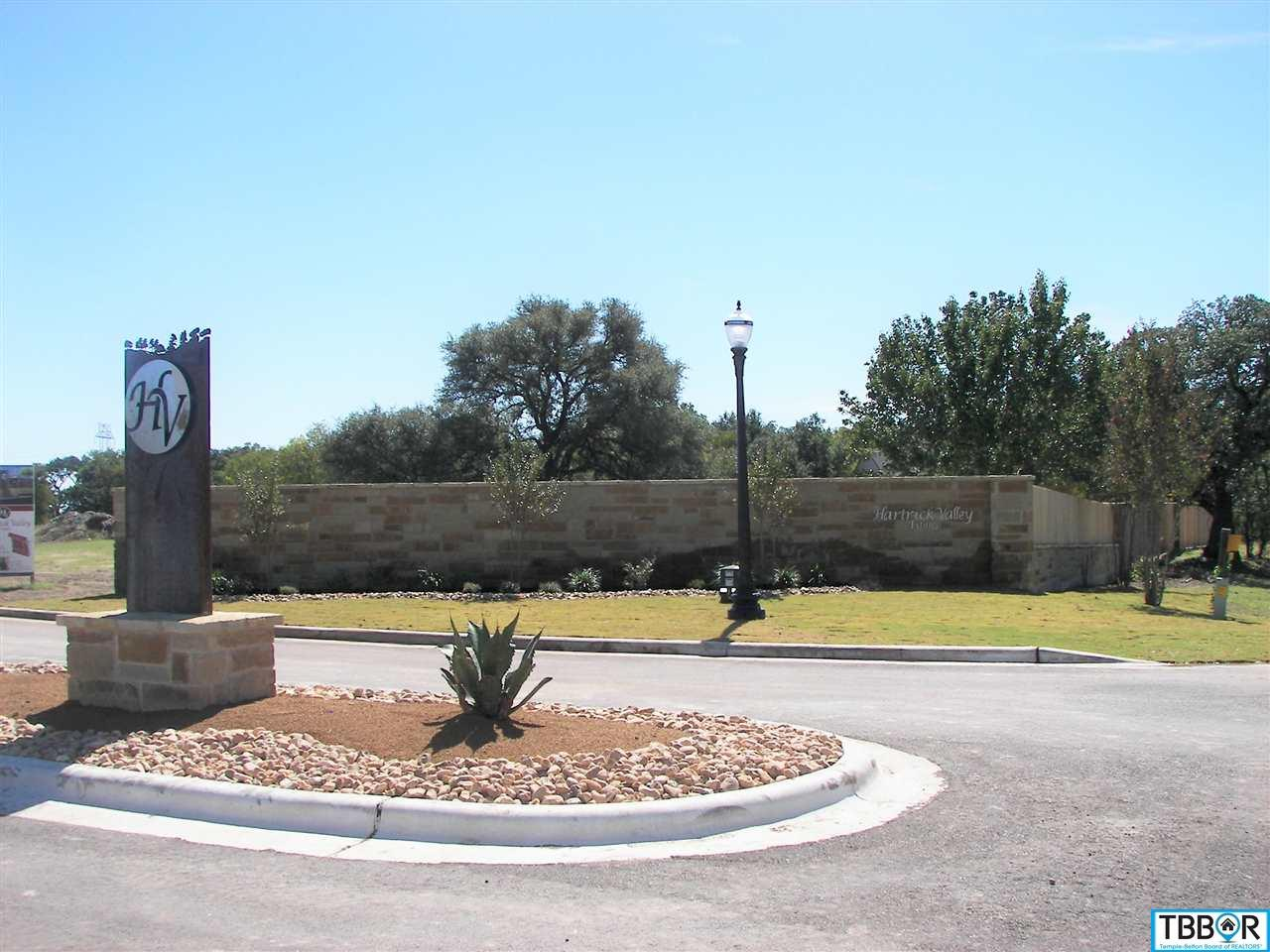 Tbd Haymarket Drive, Temple TX 76502 - Photo 1