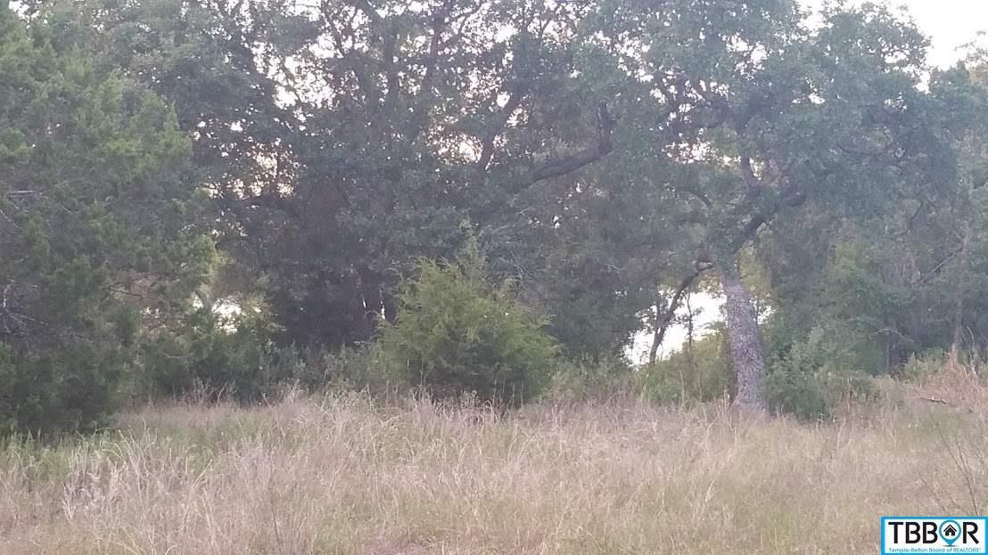 12286 Bonnie Ln, Belton TX 76513 - Photo 2
