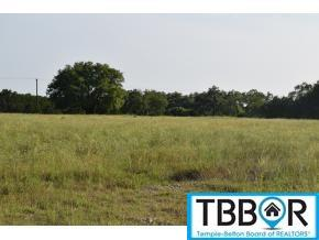 6055 Dog Ridge, Belton TX 76513 - Photo 1