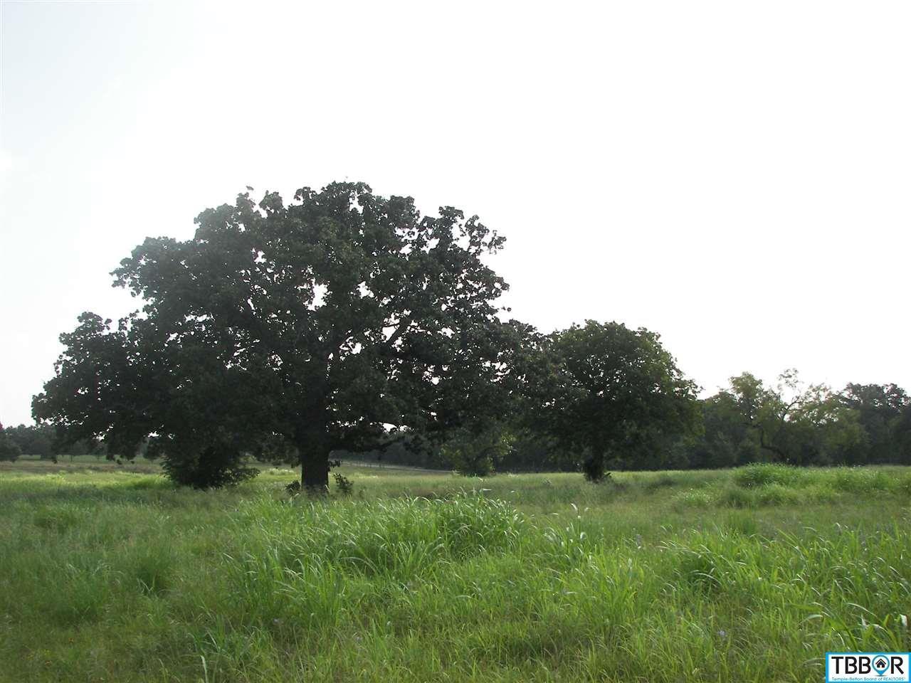 Tbd W Fm 436, Belton TX 76513 - Photo 2