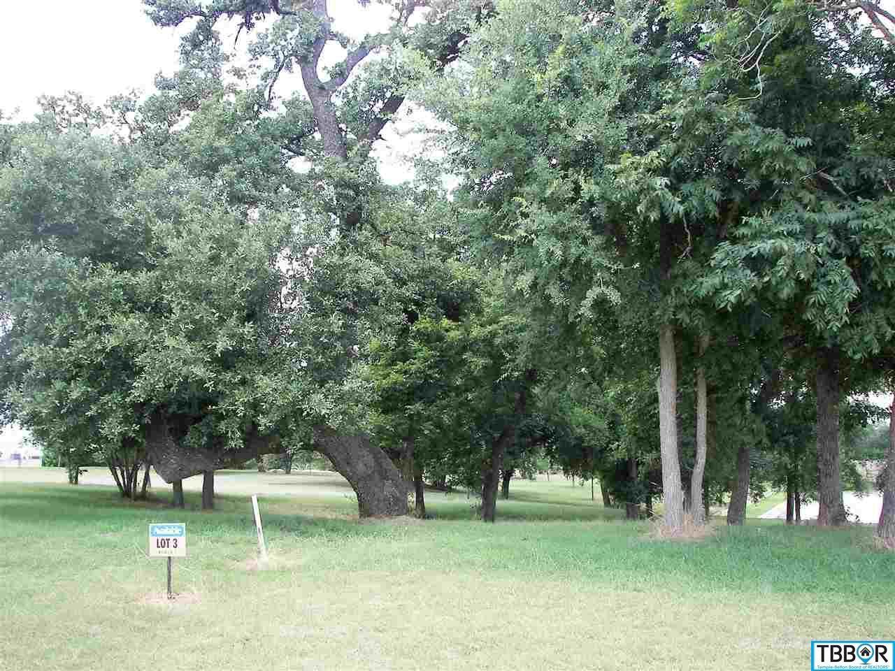 290 Via Lago, Belton TX 76513 - Photo 2