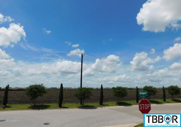 312 County Road, Jarrell TX 76537 - Photo 2