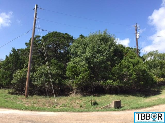 16346 Charlya Dr., Temple TX 76502 - Photo 1