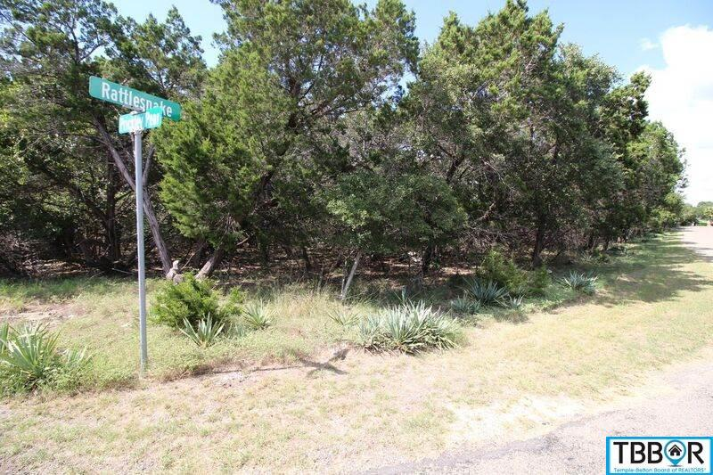 000 Prickley Pear, Belton TX 76513 - Photo 1