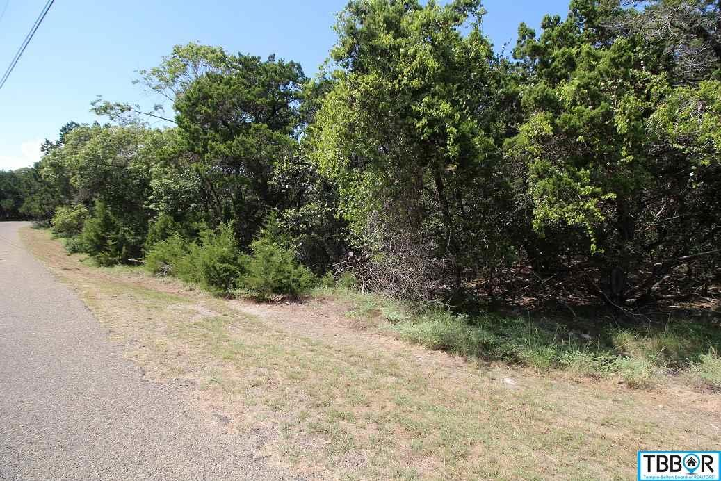 000 Prickley Pear, Belton TX 76513 - Photo 2
