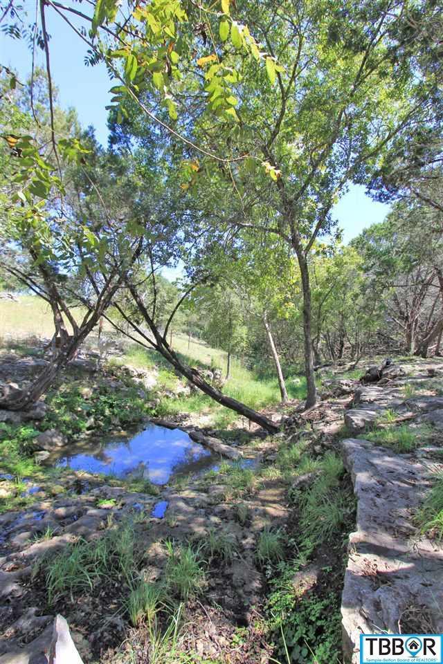 1276 Hidden Park Court, Salado TX 76571 - Photo 2