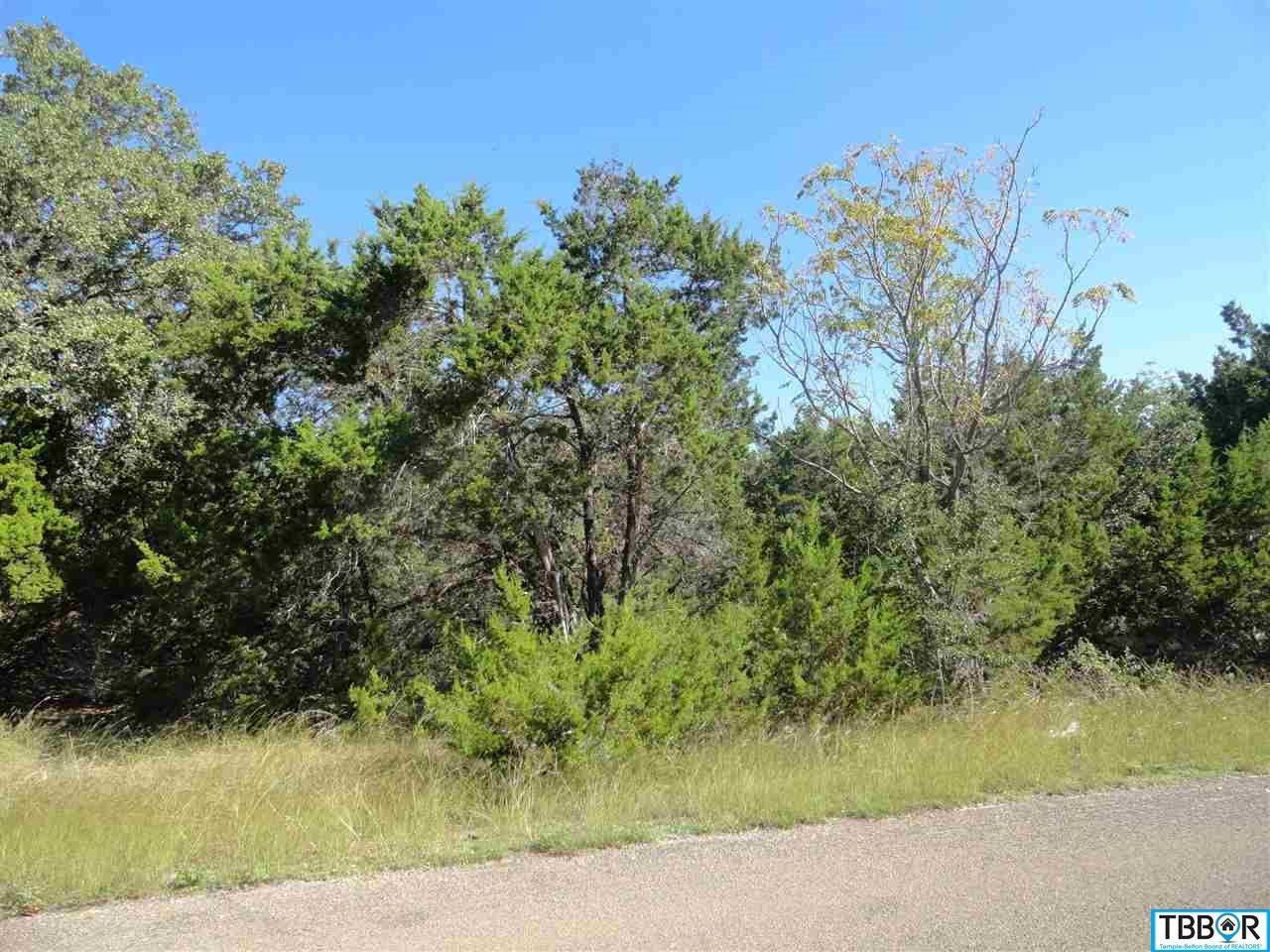 3553 Walter Lane, Belton TX 76513 - Photo 1