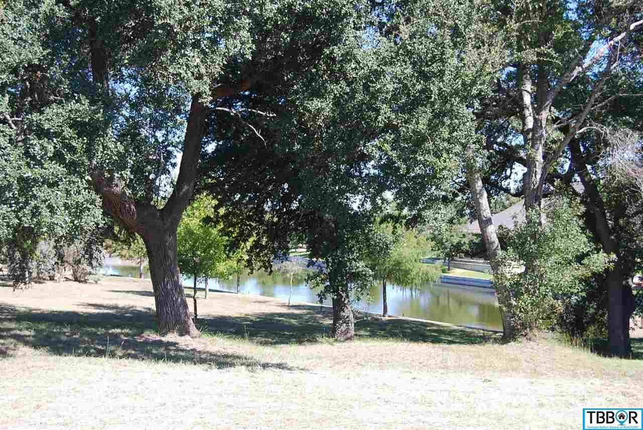 316 Via Lago, Salado TX 76571 - Photo 1