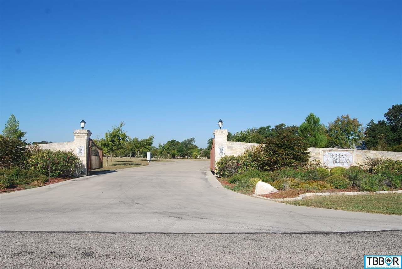 316 Via Lago, Salado TX 76571 - Photo 2