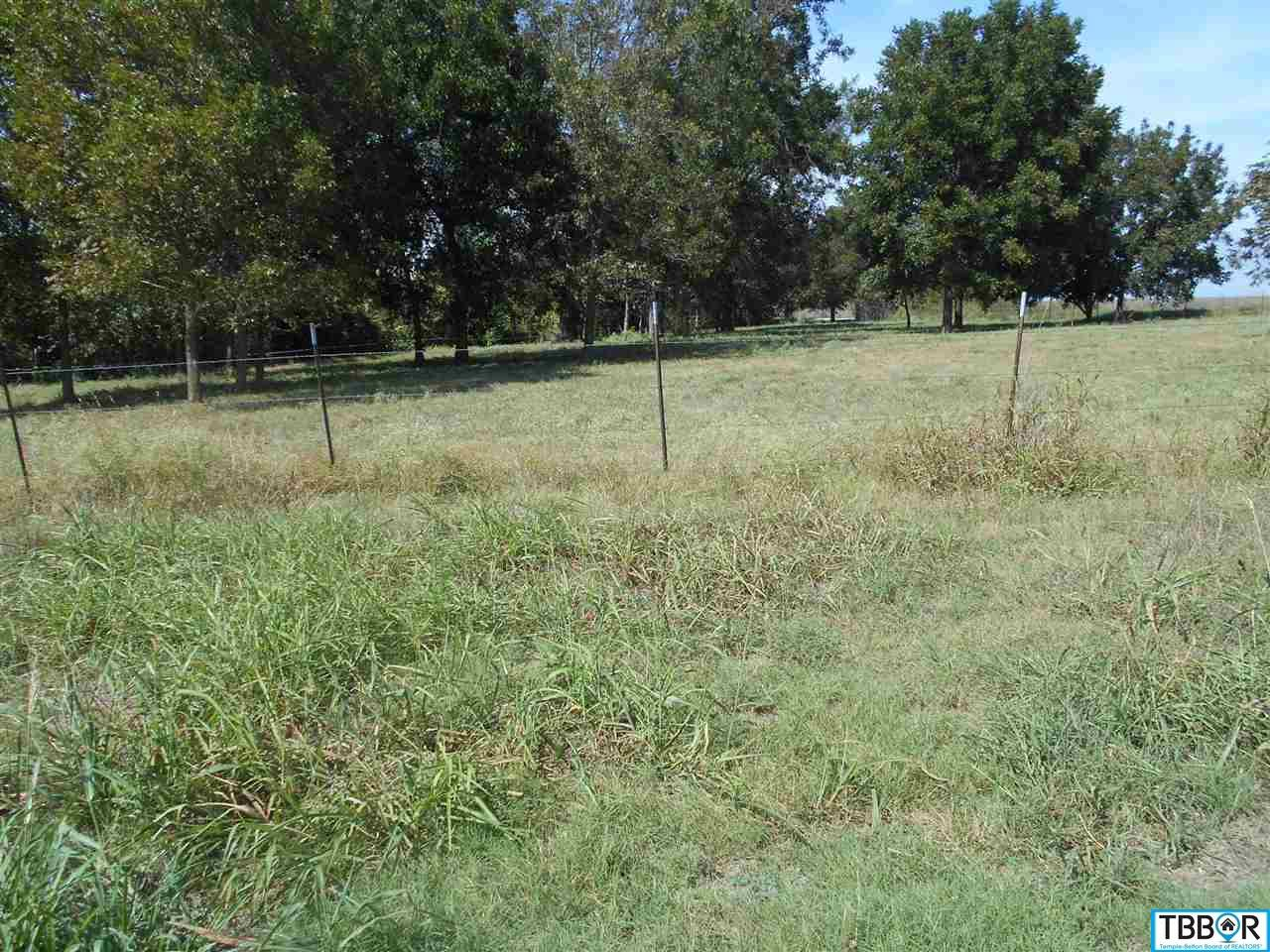 0000 Hackberry Rd, Holland TX 76534 - Photo 2