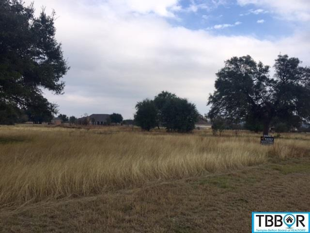 000 Mission Trail, Salado TX 76571 - Photo 1