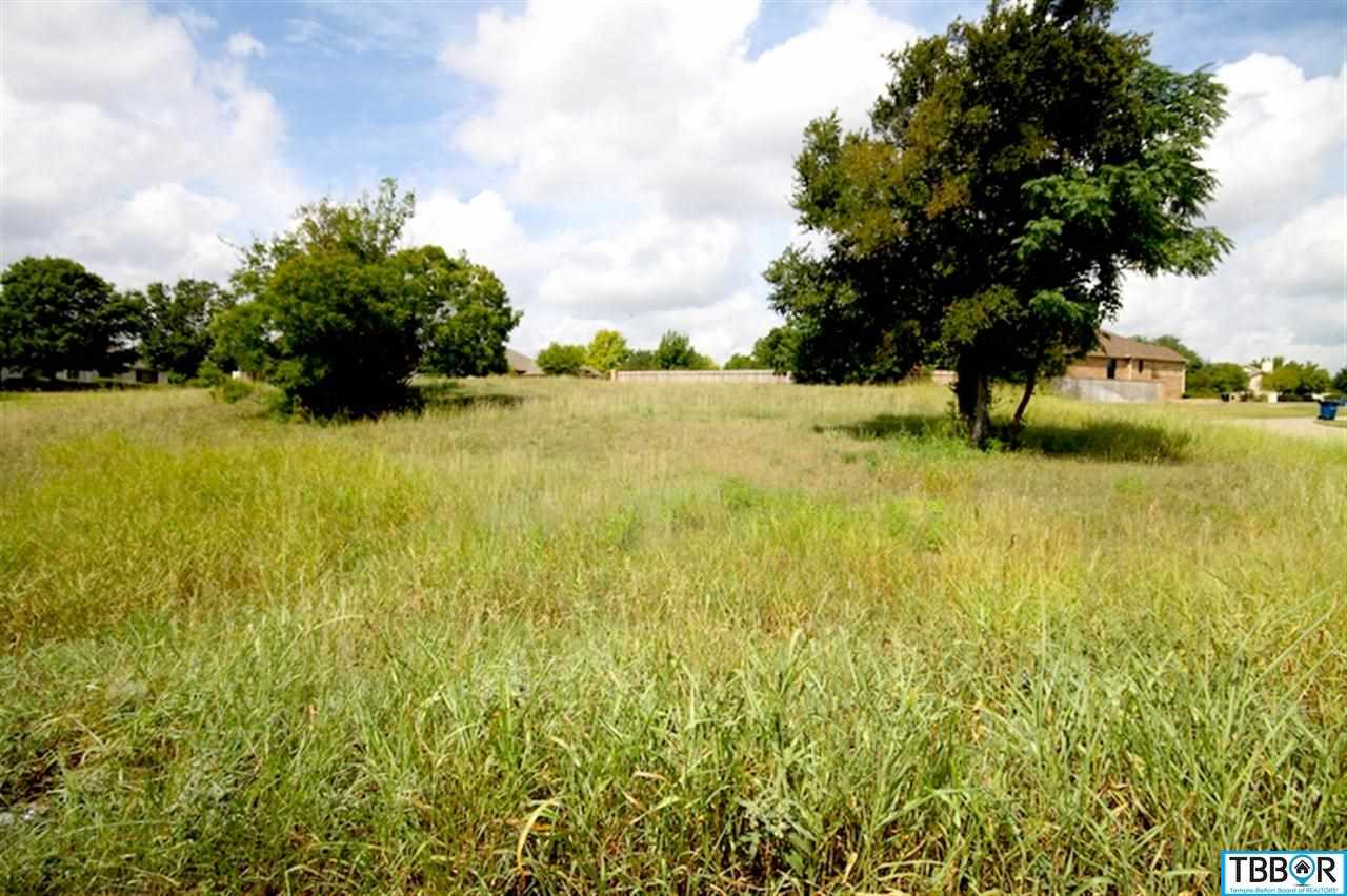 1900 Kevlin Trail, Salado TX 76571 - Photo 1