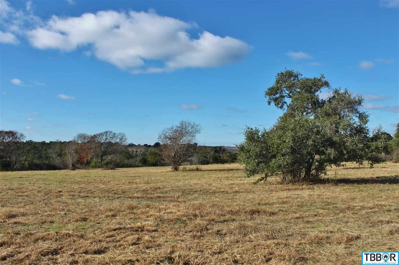153 Indian Ridge Road, Belton TX 76513 - Photo 1