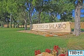 3085 Rolling Meadow Drive Salado