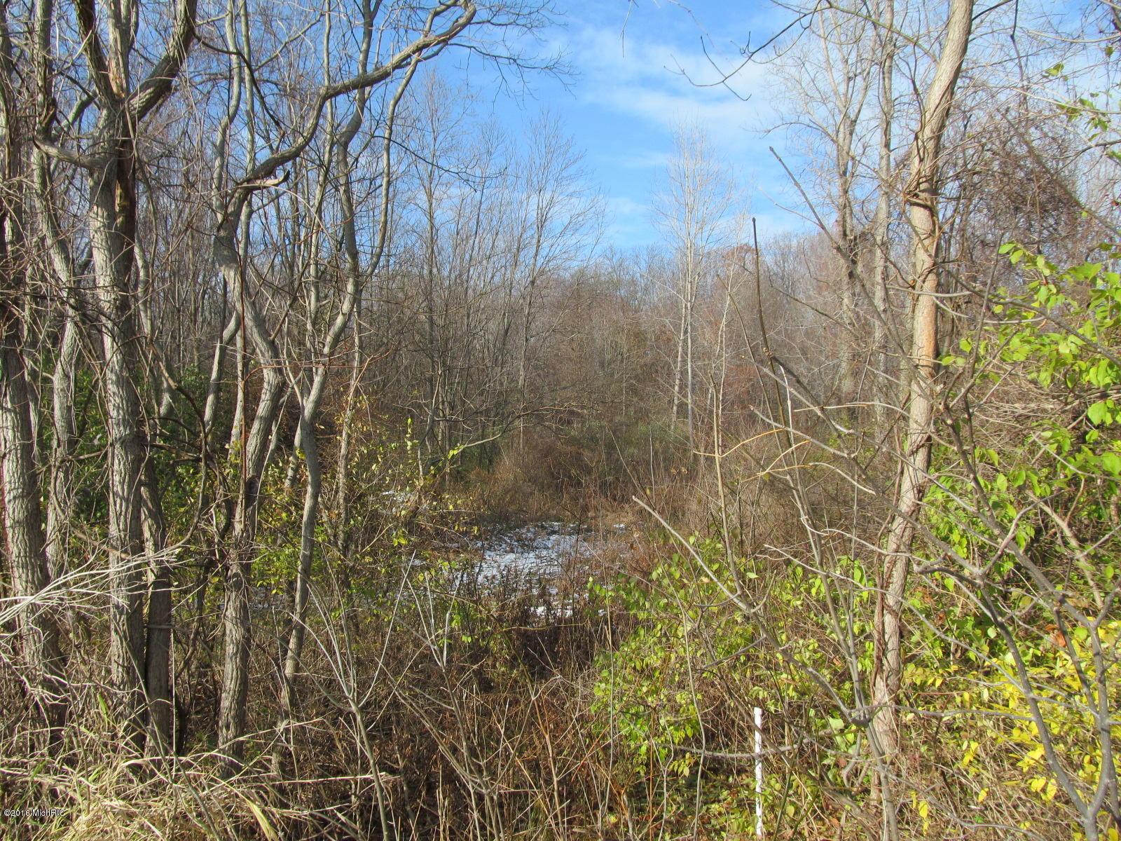 Marquette Woods Road, Stevensville MI 49127 - Photo 1