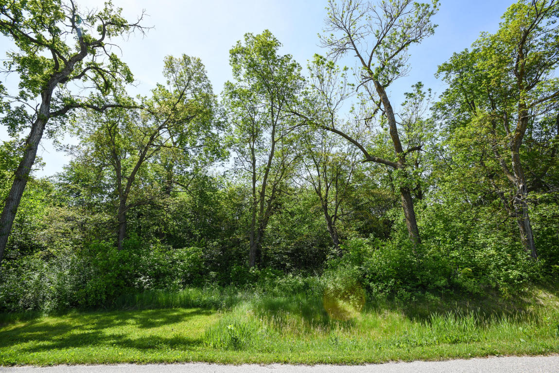 Lot 2 Blk 1 Woodhaven, Vergas MN 56587 - Photo 2
