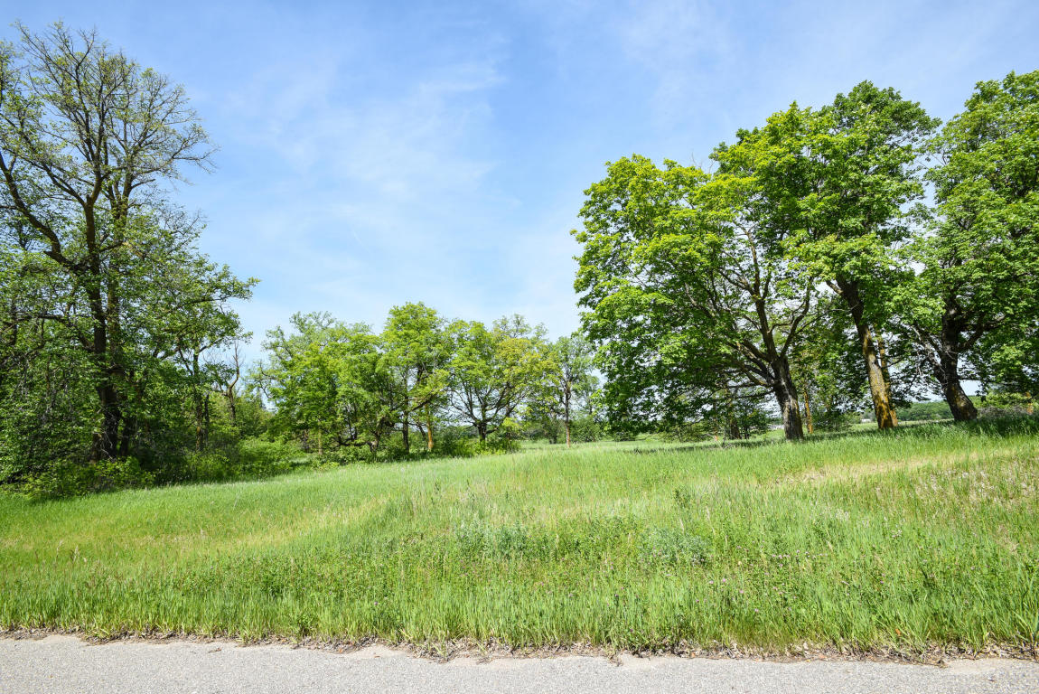 Lot 4 Blk 3 Woodhaven, Vergas MN 56587 - Photo 1