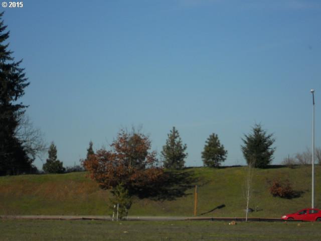 0 Battlecreek Rd, Salem OR 97301 - Photo 1