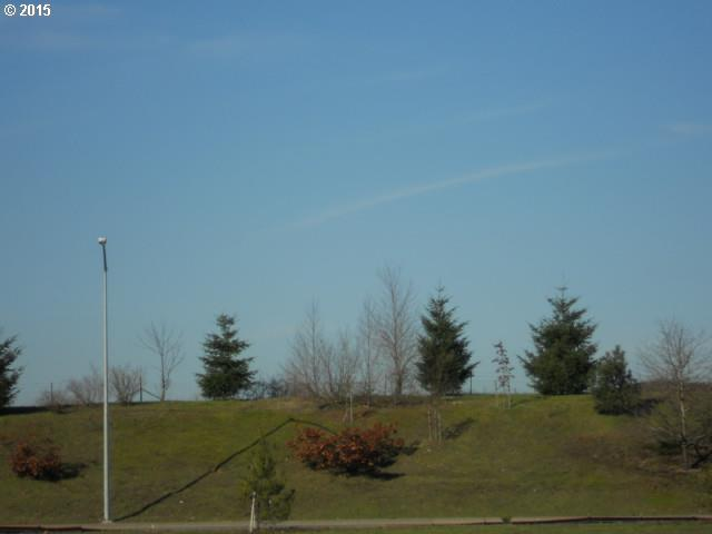 0 Battlecreek Rd, Salem OR 97301 - Photo 2