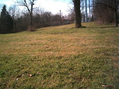 29 Magnolia Avenue, Millersburg KY 40348 - Photo 1